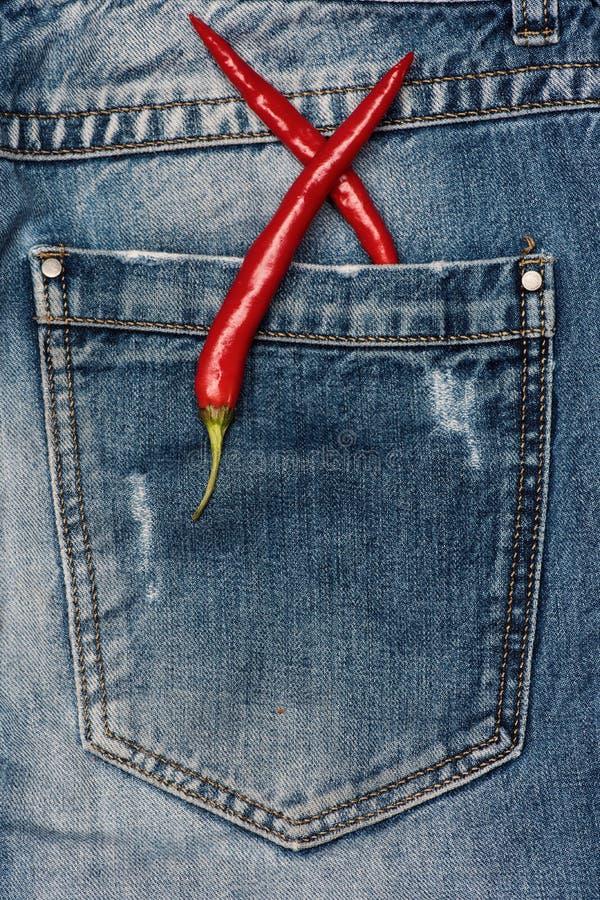 Pimientas en fondo de la tela de los tejanos Comida picante a ir concepto Las pimientas de chile con gusto caliente en pantalones fotografía de archivo