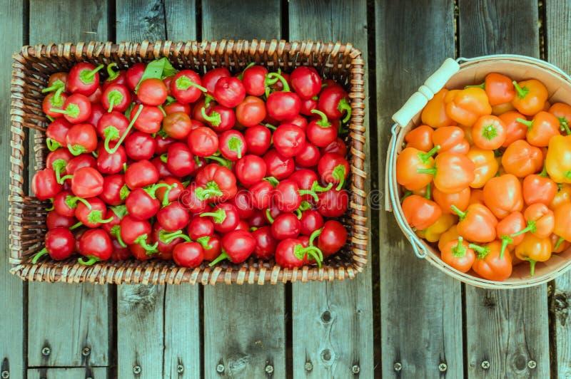 Pimientas rojas y anaranjadas en cestas fotos de archivo