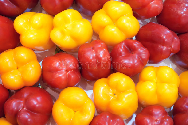 Pimientas, rojo, amarillo, naranja, verde imagen de archivo libre de regalías