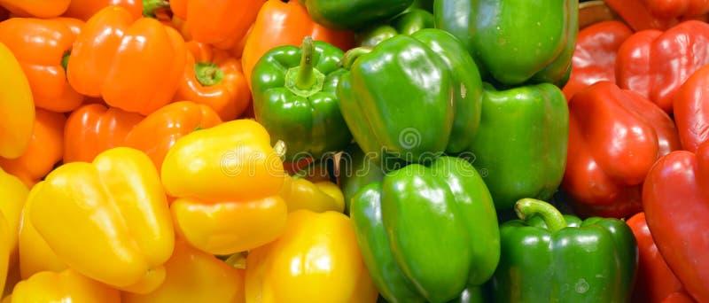 Pimientas, rojo, amarillo, naranja, verde imagen de archivo