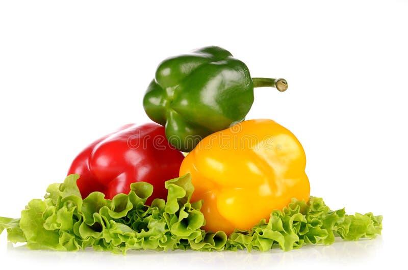 Pimientas verdes y amarillas rojas en la hoja de la ensalada aislada fotografía de archivo