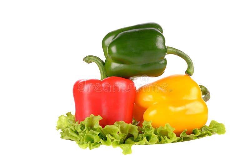 Pimientas verdes y amarillas rojas en la hoja de la ensalada aislada imágenes de archivo libres de regalías