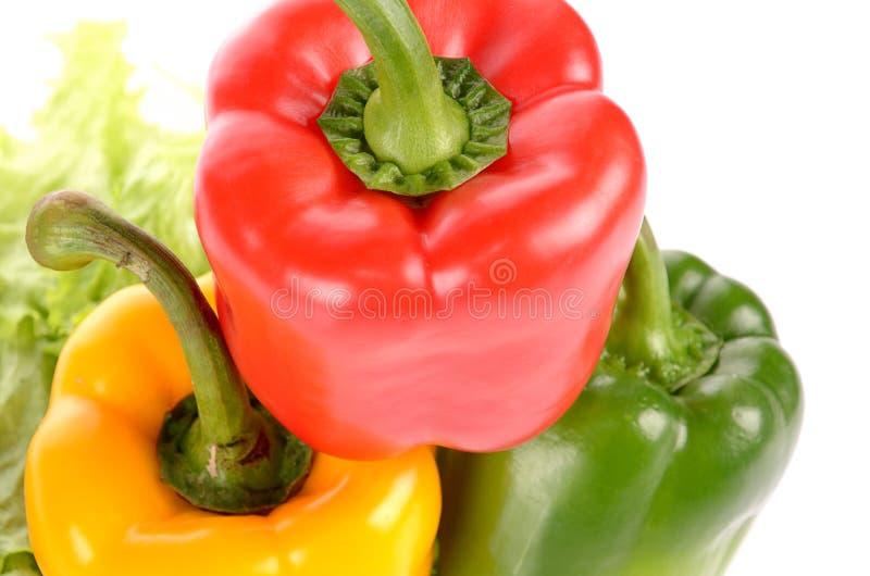 Pimientas verdes y amarillas rojas en la hoja de la ensalada aislada en el CCB blanco fotografía de archivo libre de regalías