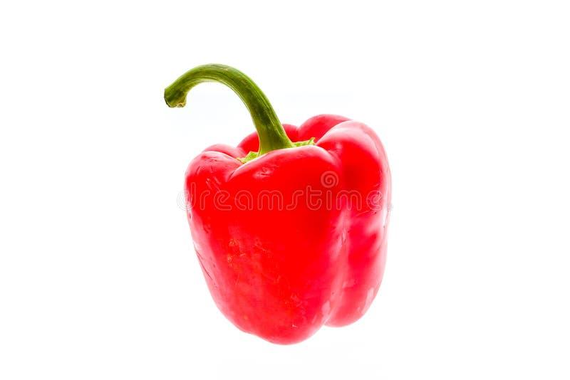Pimiento fresco maduro rojo grande orgánico del paprika aislado en pizca fotografía de archivo