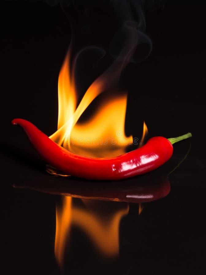 Pimiento picante - chile y llamas en un fondo negro foto de archivo
