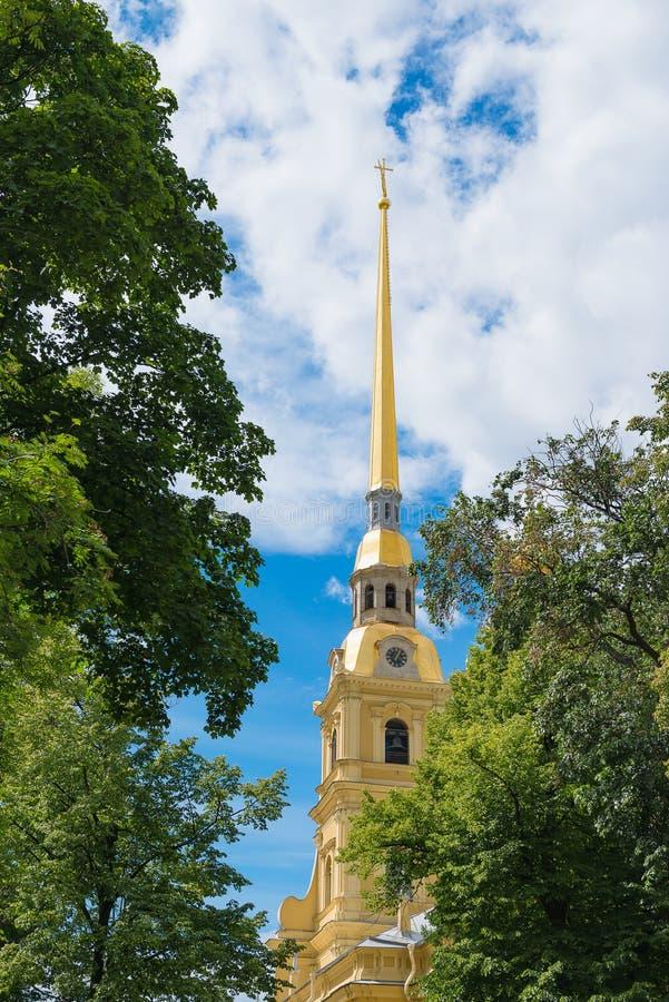 Pináculo da catedral de Peter e de Paul Fortress contra o contexto das hortaliças e do céu azul com nuvens Sightseeing, tema do t imagem de stock royalty free