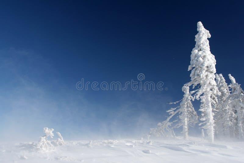 Pináculo da montanha imagem de stock