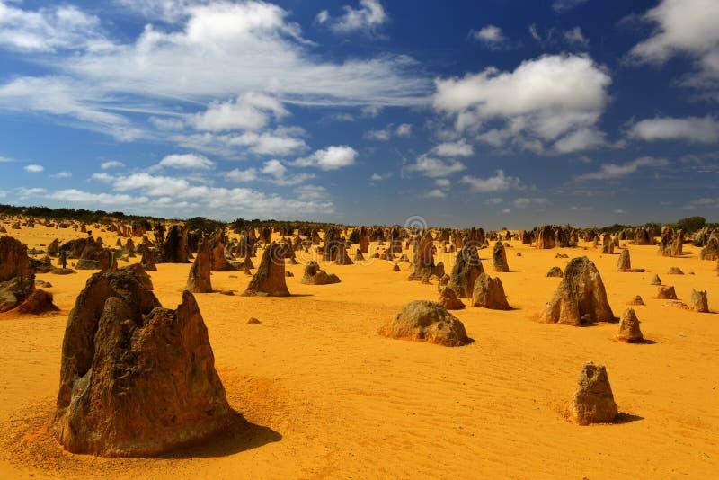 Pináculos desierto, Australia foto de archivo