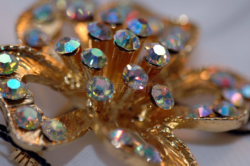 Pin 2 da flor do diamante fotografia de stock royalty free