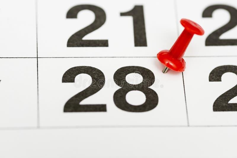 Pin na data número 28 O vigésimo oitavo dia do mês é identificado por meio de um percevejo vermelho Pin no calendário fotografia de stock