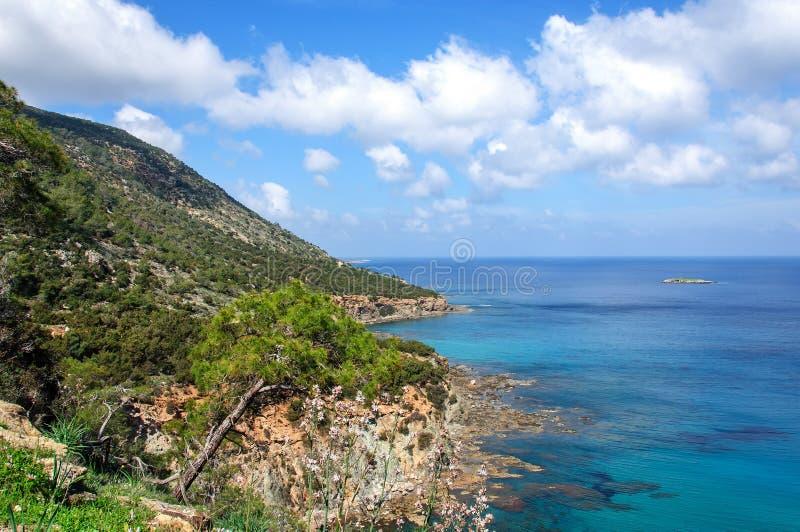 Pin sur le fond de la mer Méditerranée Akamas cyprus photos stock