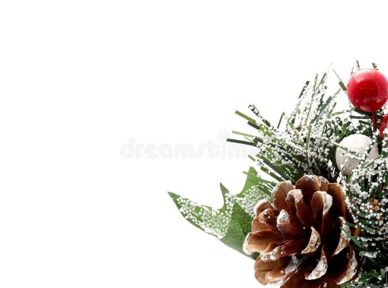 Download Pina Χριστουγέννων στοκ εικόνα. εικόνα από στολισμούς - 1529031