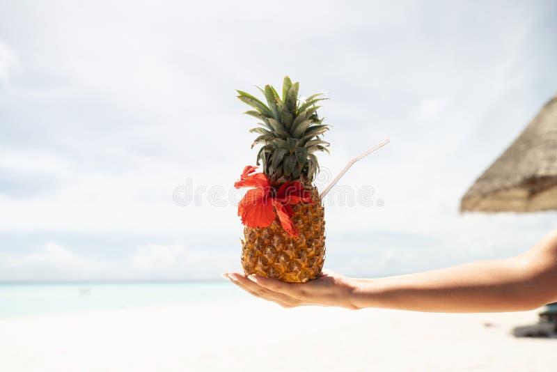 Pina Colada-Cocktail in der Ananas in einer weiblichen Hand Der Hintergrund wird verwischt stockfotografie