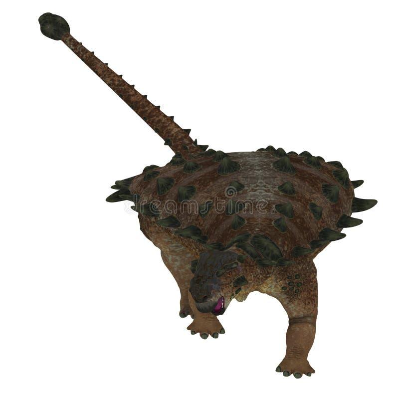 Pinacosaurusdinosaurus op Wit vector illustratie