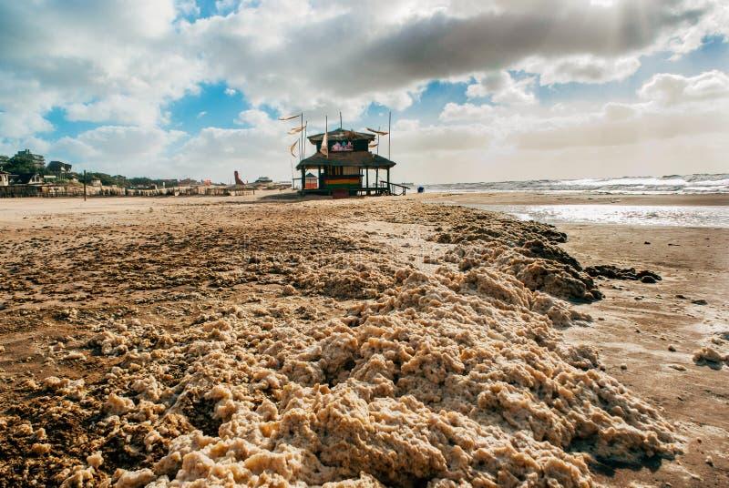 Pinamar海滨城镇布宜诺斯艾利斯阿根廷 库存照片