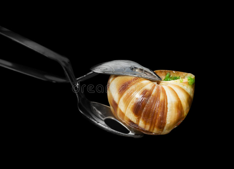 Pincers francesi per escargot fotografie stock