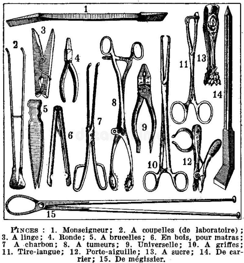 Pinces Free Public Domain Cc0 Image