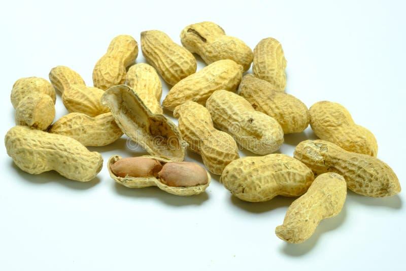 Pinda in een shell textuur De achtergrond van het voedsel stock afbeelding