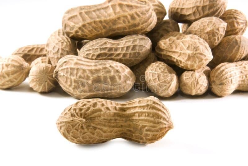 Pinda's in shell stock afbeeldingen