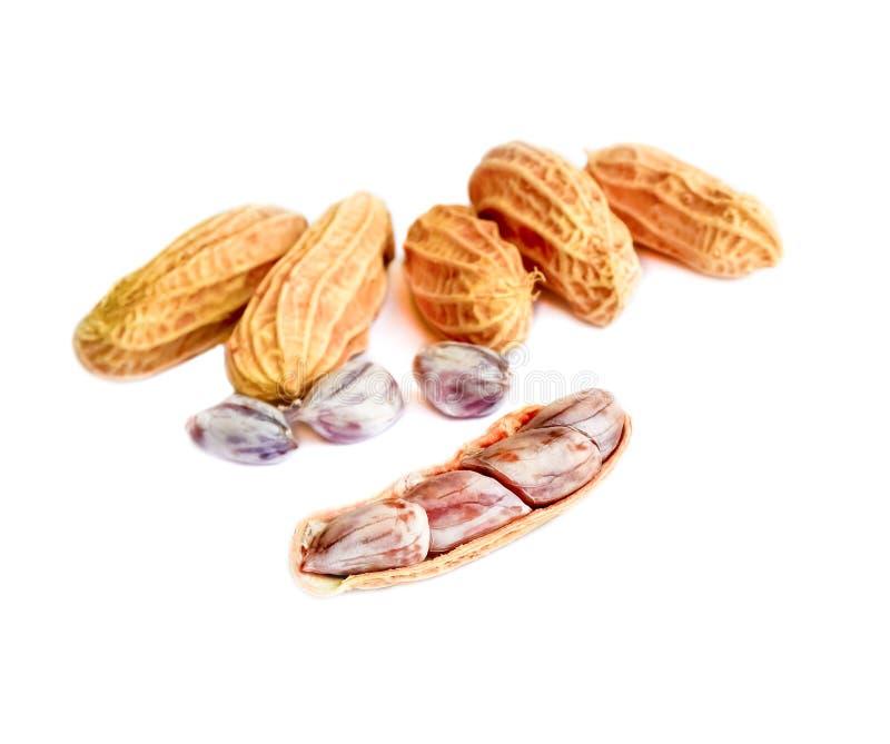 Pindagroep de noten sluiten omhoog op witte achtergrond stock foto