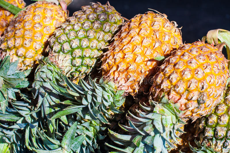 Download Pine-apple stock photo. Image of green, full, tasty, healthy - 29056404