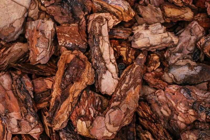 Pine bark mulch stock photography