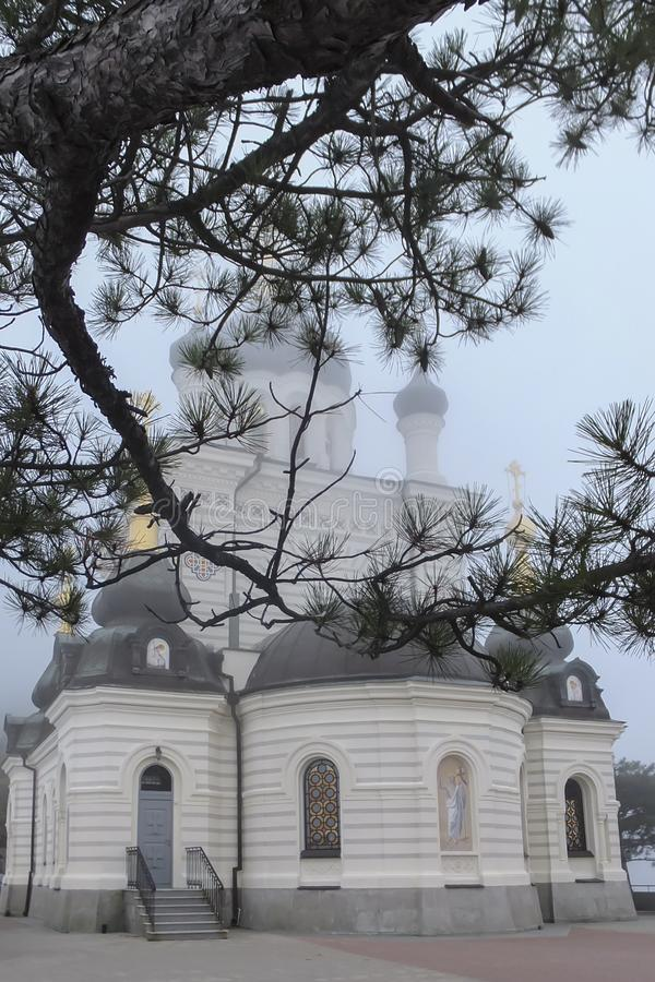 Pine branch with dark green needles closes the church building from above. Domes of Orthodox Foros Church are covered with white f stock image
