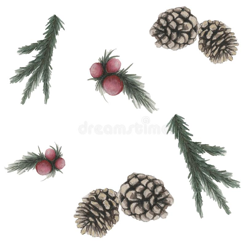 Pine branches, red berries, and pine cones on the white background. royalty free illustration