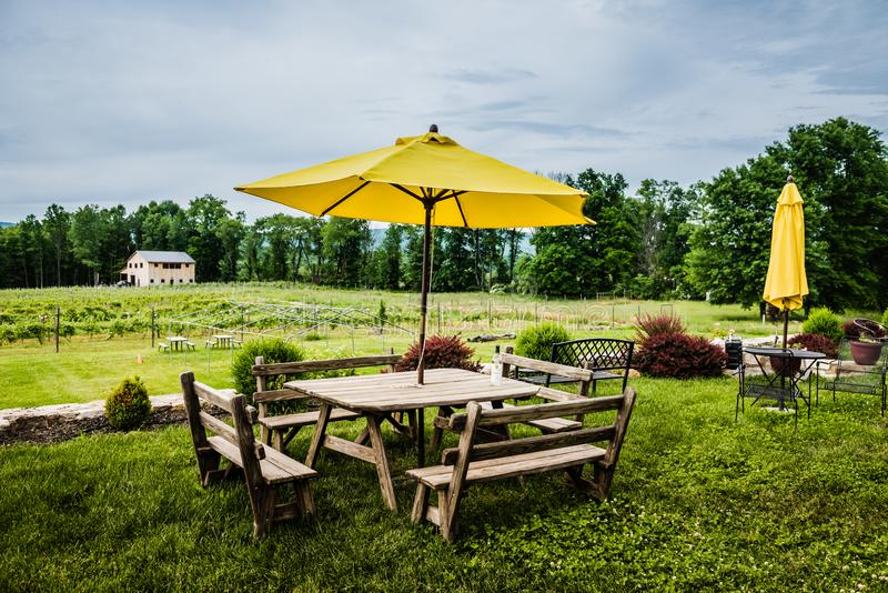 Christopher Jacobs Vineyard Outdoor Seating. Pine Bush, NY /USA - June 9, 2018: Picnic table overlooking vineyard at Christopher Jacobs Winery royalty free stock image