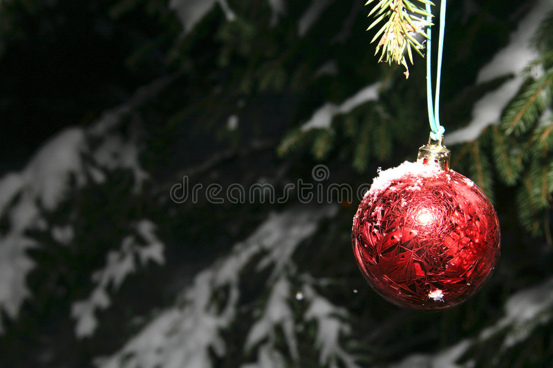 Download Pine and christmas ball stock image. Image of gift, chill - 4727791