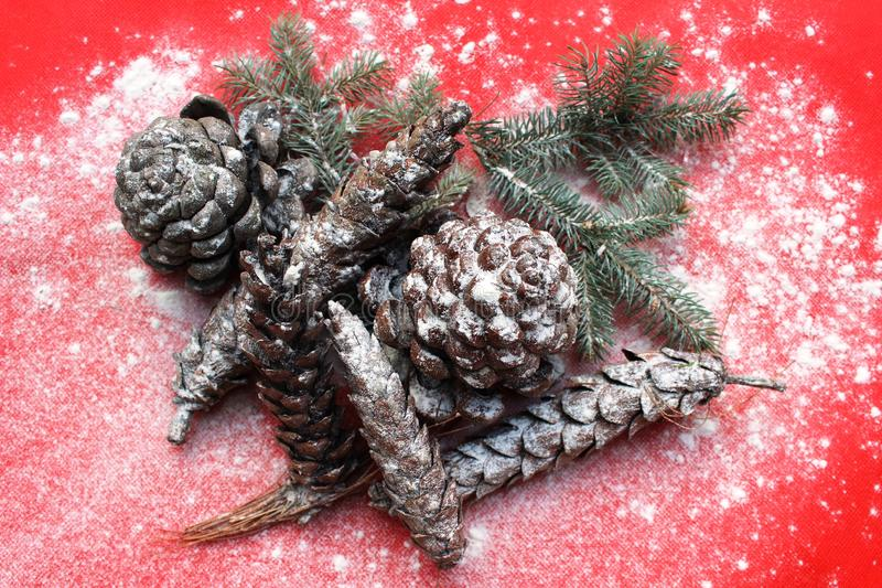 Download Pine cone stock image. Image of christmas, pine, isolated - 27932397