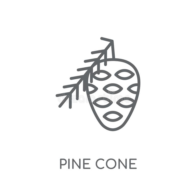 Pine cone linear icon. Modern outline Pine cone logo concept on. White background from Christmas collection. Suitable for use on web apps, mobile apps and print royalty free illustration
