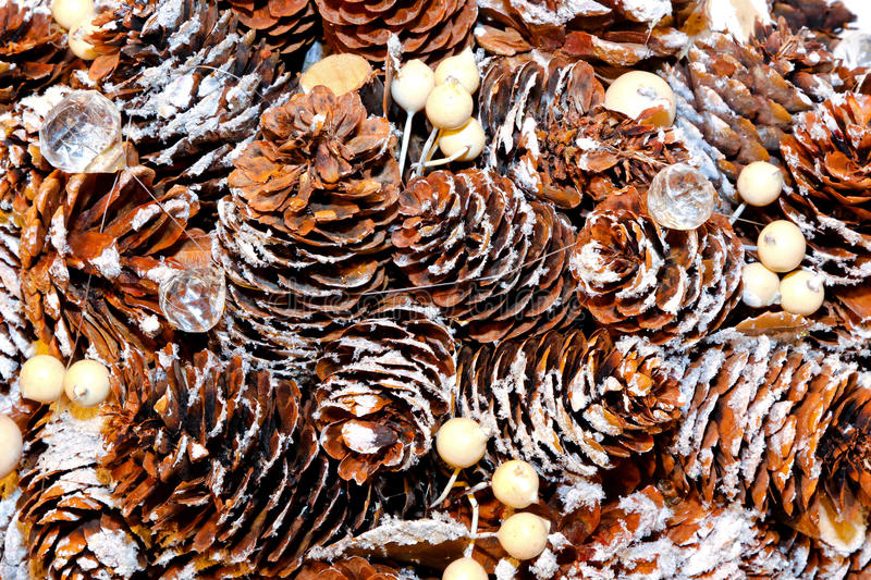 Download Pine cone texture stock image. Image of decor, snow, texture - 16995479