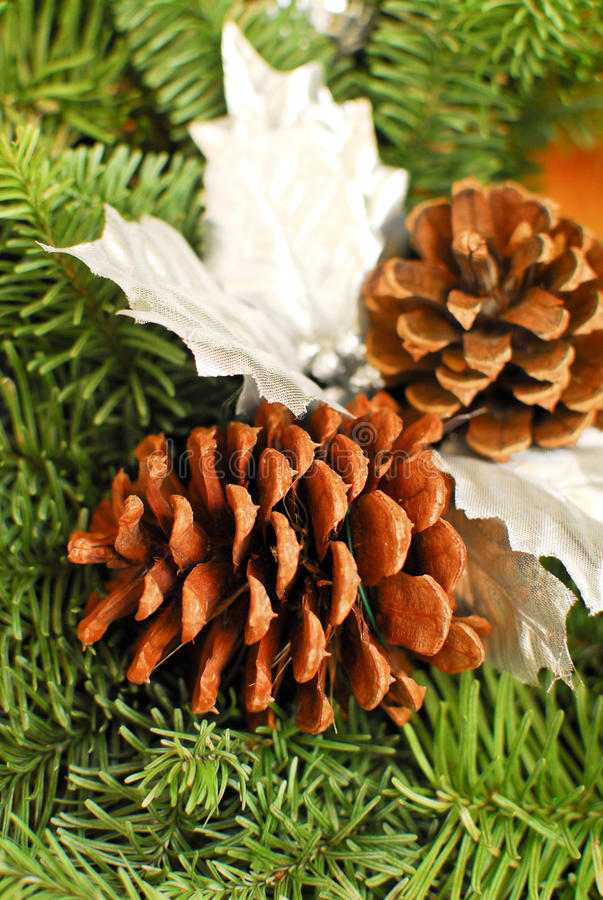 Download Pine Cones stock image. Image of house, scented, decoration - 23264819