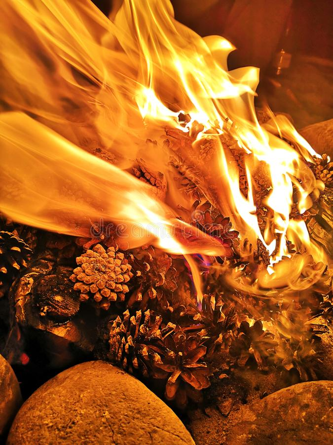 Pine cones burning in the fire. Firewood and pine cones burn in the fire. stock photography