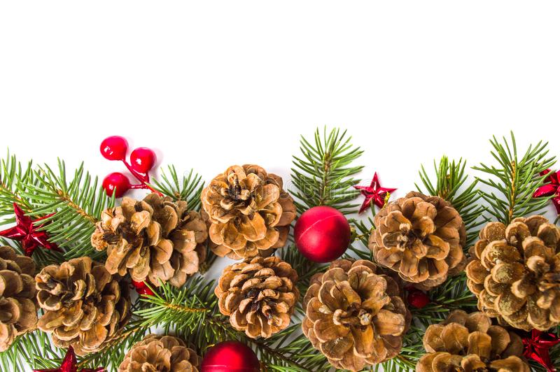 Pine cones festive background with fir branch stock image