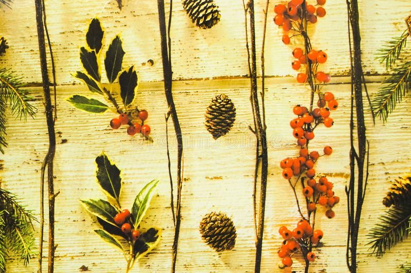 Pine cones fir branches and red fruits with leaves drown on wooden background stock illustration