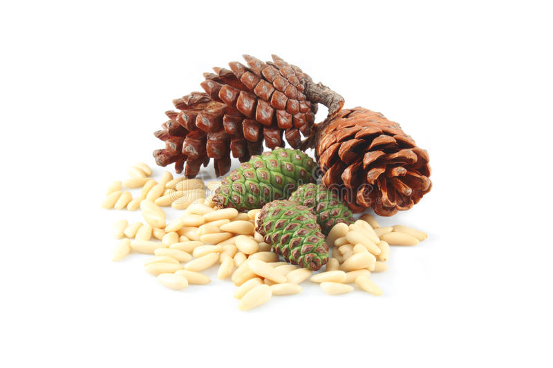 Pine cones and nuts. On white background royalty free stock image