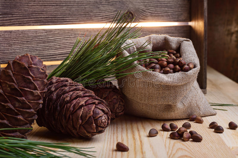 Pine cones and nuts in the bag. royalty free stock images