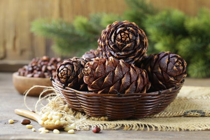 Pine cones and nuts royalty free stock photos