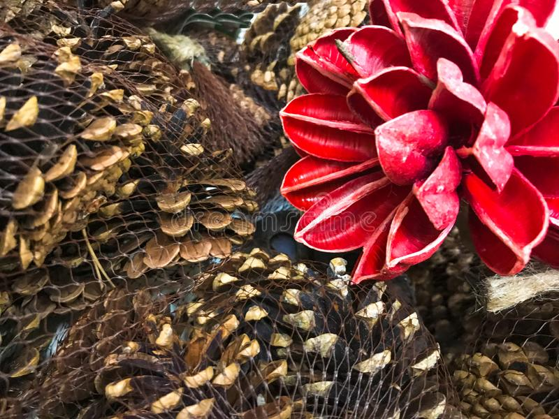 Pine cones spruces with red wood flower vintage decor photo picture stock photo