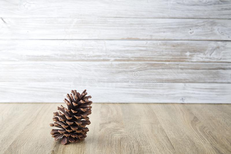 pine cones with wall white wooden royalty free stock photo