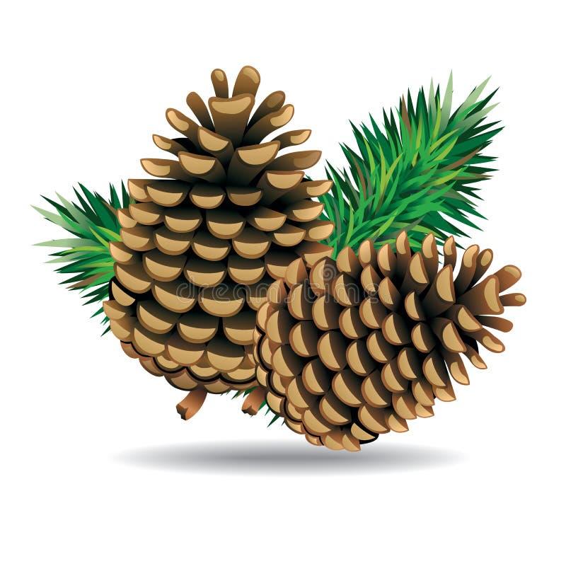 Free Pine Cones With Pine Needles. Stock Photography - 38954522