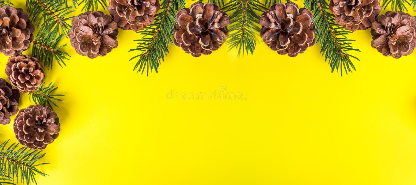 Pine cones on yellow background festive background stock images