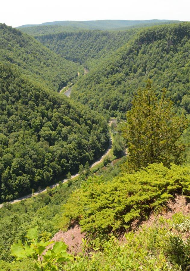 Free Pine Creek Gorge Stock Image - 21536601