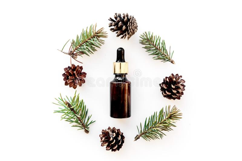 Pine essential oil in bottles on white background top view copy space. Pattern with pine branch and cone royalty free stock photo