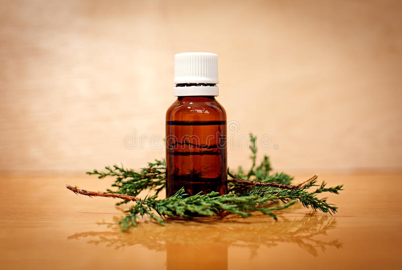 Pine essential oil royalty free stock photo
