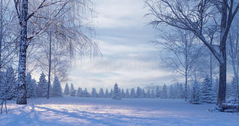 Pine forest in the foggy winter night. 3D Rendering stock photo