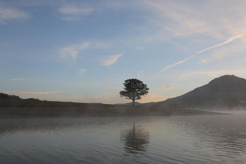 Pine forest island and shrubs refection on the lake at dawn with magic of the sky and clouds part 4 royalty free stock photo