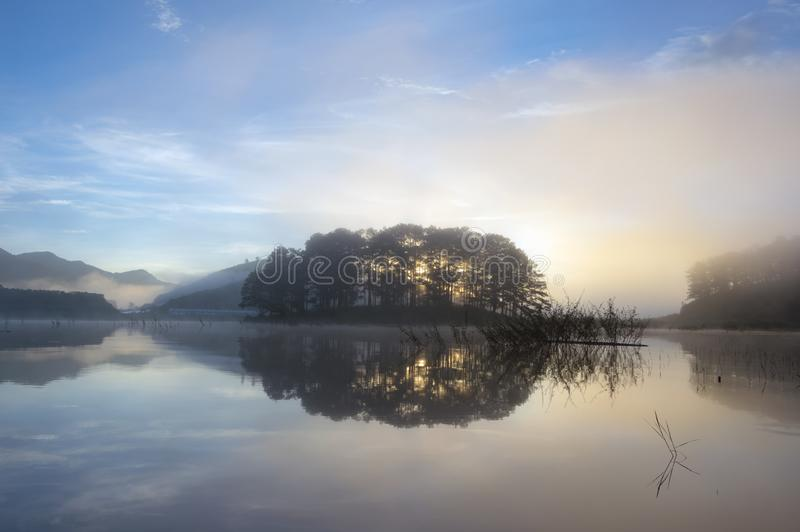 Pine forest island and shrubs refection on the lake at dawn with magic of the sky and clouds part 7 stock photos